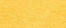 Limoleum Fliesen https://linoleum-24.com/