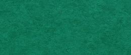 Tarkett Linoleum Style Emme https://linoleum-24.com/